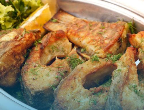 Velikonoční kapr – čerstvé ryby zjarních výlovů